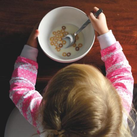 ESTUDO 8 – Do leite ao alimento sólido